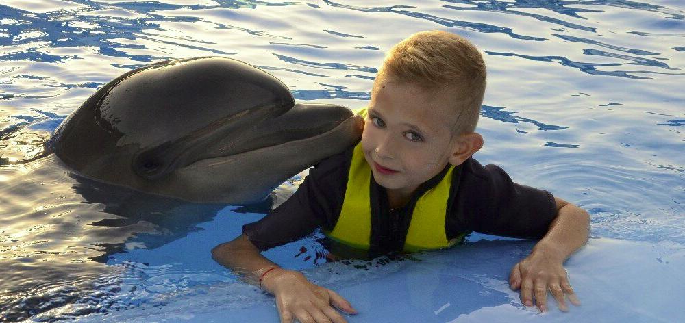 Плавание с дельфином в Хургаде
