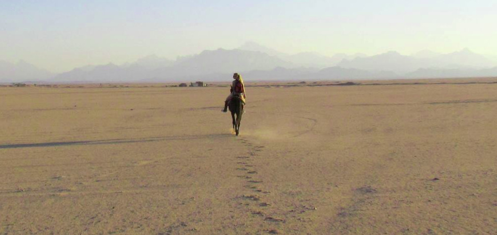 На лошадях к бедуинам из Хургады
