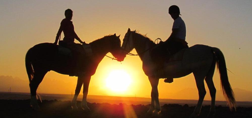 Конные прогулки в пустыню Хургады