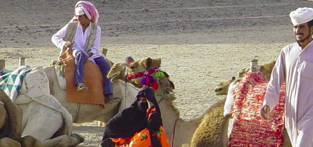 Сафари Сахара Парк - расширенная поездка на разных средствах передвижения из Хургады