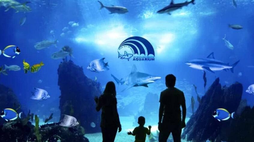 Гранд аквариум в Хургаде с Karextours