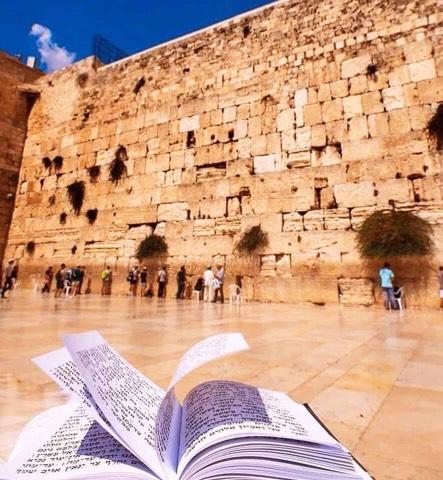 Поездка в Израиль из Хургады